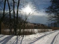 Oberteich bei Schnee